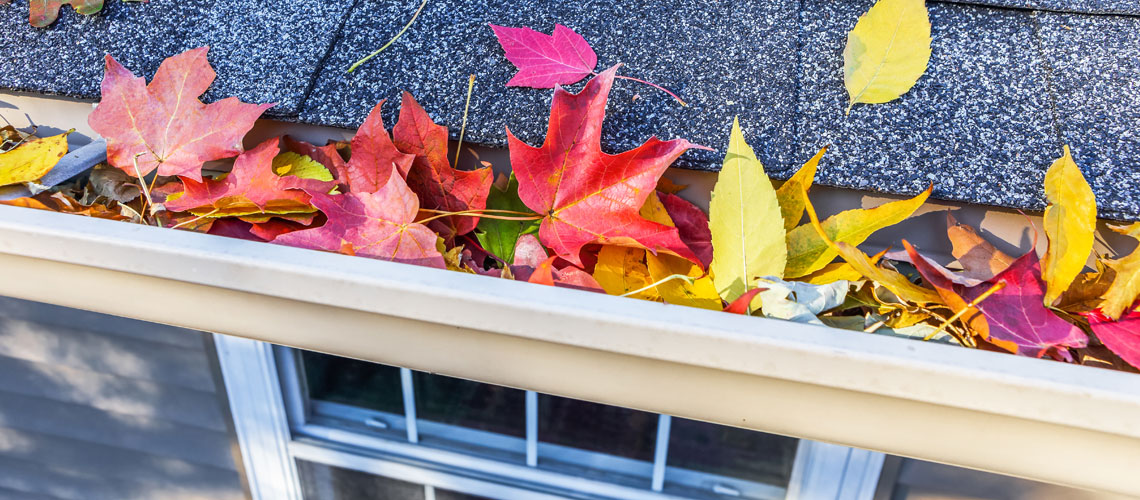 Home Improvements to Get Ready for Fall